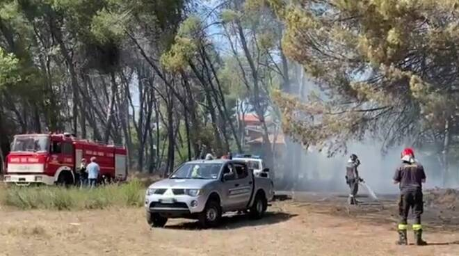 incendio pineta pescara
