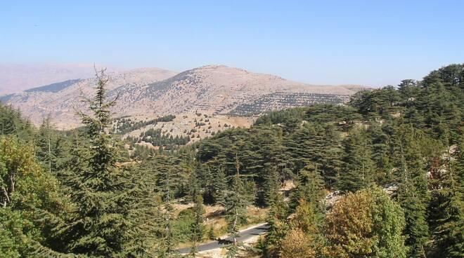 riserva libano