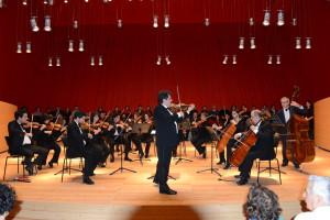 Foto n°5 Concerto di capodanno 2014DMD_7394